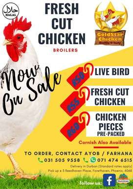 Chicken - broilers, cornish for sale at affordable prices