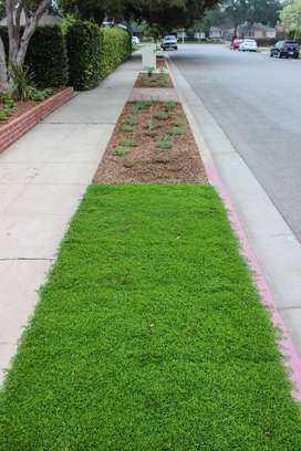 Instant lawn supply and installation