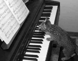 уроки вокала и игры на фортепиано