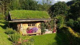 folia dorkena na dach trawiasty