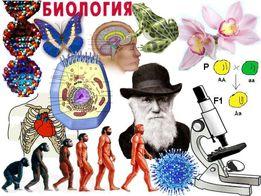 Репетитор по биологии и химии