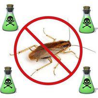 Дезинсекция квартиры. Уничтожение тараканов в Запорожье