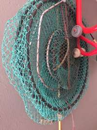 Image of Fish net and catcher