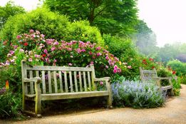 Usługi ogrodnicze pielęgnacja porządkowanie wycinanie i przycinanie