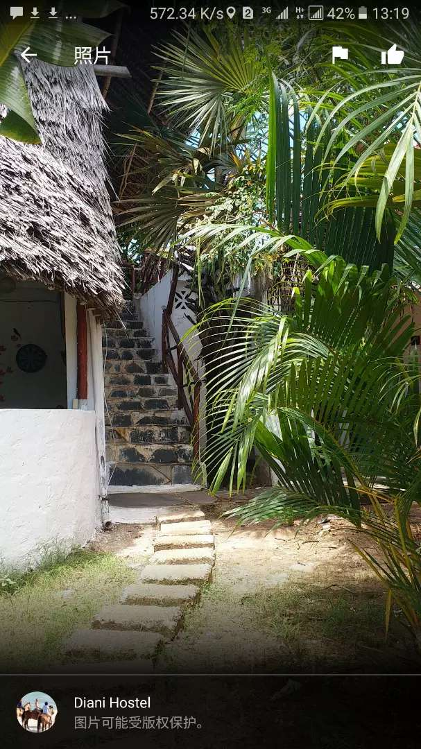 Diani beach road hostel  Business for sale. 0