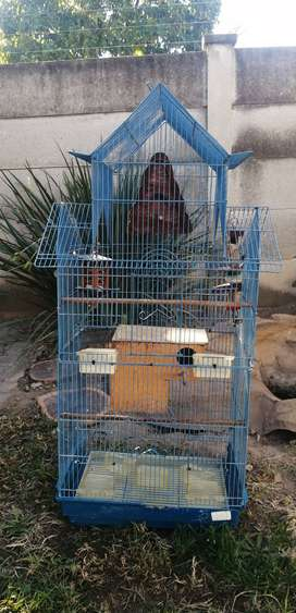 Bird Cage suitable for Parrots and smaller