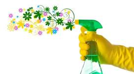 AMAZING CLEANING SERVICES FROM DAZZLE DUST BUSTERS