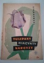 Tulipany, hiacynty, narcyzy - J. Dąbrowski