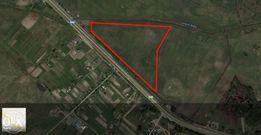 Продам 10,32 Га частной земли на трассе Киев-Чоп. Не под мораторием.