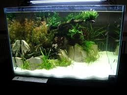 Мраморная крошка для аквариума с Цихлидами