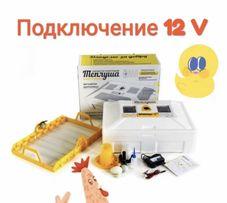 Инкубатор автоматический Инверторный Теплуша Люкс 72 ИБ 12/50ТАВ( 12В)