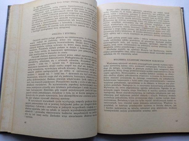 Krótki zarys nauki PAWŁOWA o wyższej konieczności nerwowej ,W-wa 1956 Jarosław - image 4