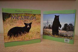 """Детская книга """"Медведи. Первое знакомство"""""""