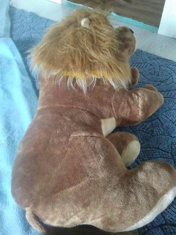 Лев - царь зверей Запорожье - изображение 3