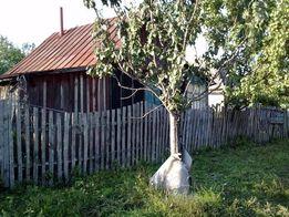 Дом с участком0,32Га с.Рубежное
