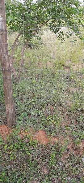 Stand for sale in Acornhoek, Mpumalanga