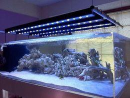 Продам светодиодные модули для подсветки аквариума все цвета