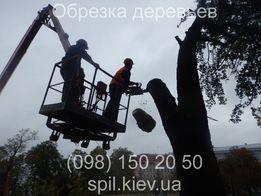 Обрезка, спил деревьев Киев. С автовышки и верхолазы. Безнал НДС.