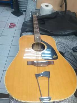 Arie 12 string acoustic guitar