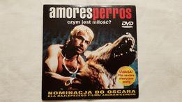 Amores Perros - czym jest miłość ?