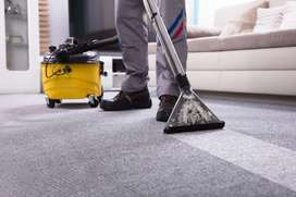 GP Carpet and upholstery Cleaning & Pest Control