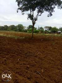 Kithimani 1/2 acre for sale pu 0