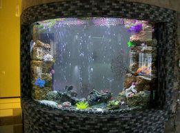 Изготовление аквариумов и пузырьковых панелей под заказ(под ключ)
