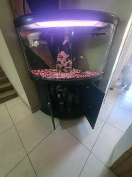 Fishthank need to se the video with tank complete installation