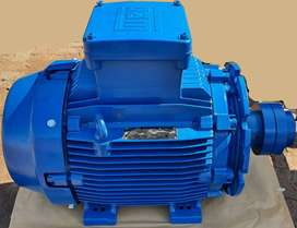 Electric Motor, 45kW dual voltage, flameproof