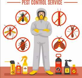Pest control and fumigation services