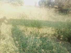 Vacant Land / Farm for sale