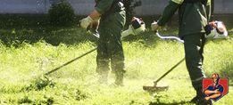 Покос травы. уборка участка