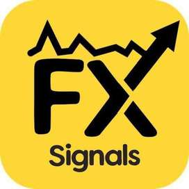 PREMIUM FOREX SIGNALS ! Limited time offer