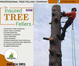 TREE CUTTING AND REFUSE REMOVAL