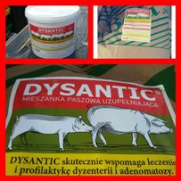 Dysantic-oryginalny produkt przeciw biegunkom.