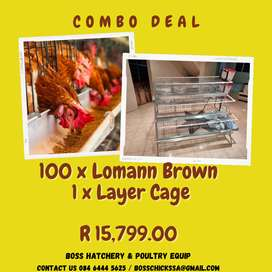 Combo Deal - Chicken Layer and Layer Cage