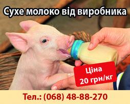 Сухе молоко від виробника для телят і поросят