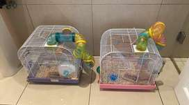 Hamster cages with hamster