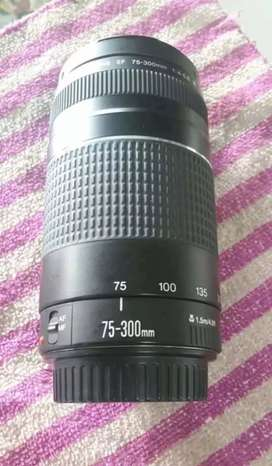 Canon 75-300mm zoom lens.