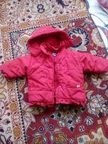 Куртка ( демисезонная)