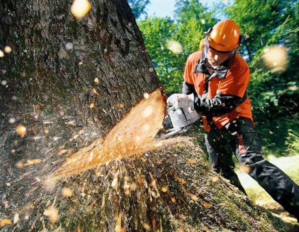 зрізання дерев, викорчовування, вивезення, прибирання