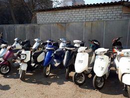 Скутер Без пробега по Украине Японские Новый завоз