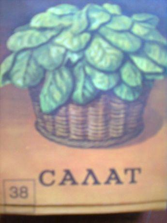 Пакетики для семян