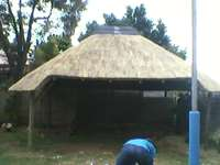 Image of Thatch roofs&lapas