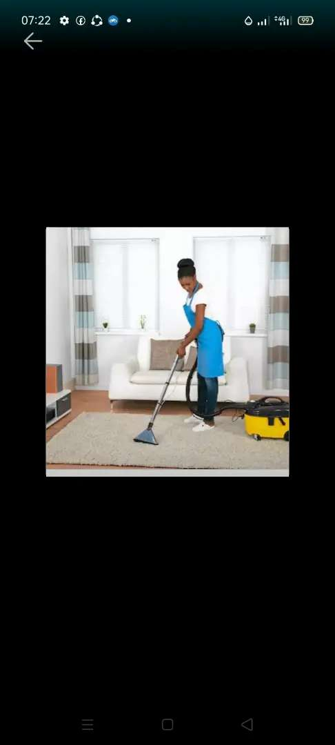 VIBRANT AND DOMESTIC WORKER