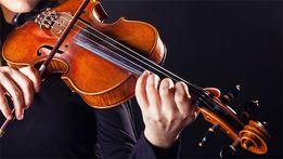 Обучение, уроки игры на скрипке