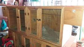 Wooden cages dubble breeders