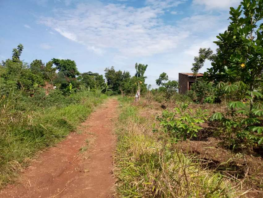 At kiira on selling plot at 25m. 0