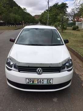 Polo Vivo now available at Queenstown.