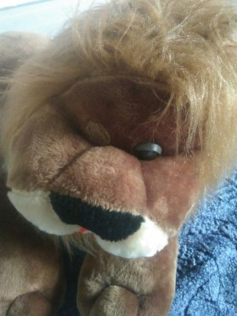 Лев - царь зверей Запорожье - изображение 2